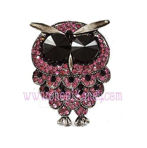 Owl Pendant & Brooch